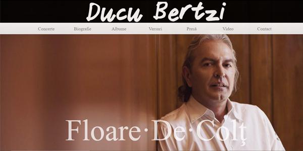 Ducu Bertzi – Website